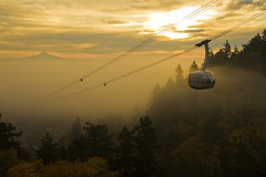 IMG_7917 (sweber4507) Tags: autumn mist fall yellow fog clouds sunrise portland gold dawn warm mt hill descent tram aerial hood pdx descend drama pill ohsu