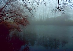 Thick fog (cienne45) Tags: carlonatale cienne45 natale italy piedmont biella magnano bose anawesomeshot arc xploremypix theunforgettablepictures friends monastery bosemonastery