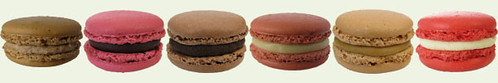 itzy bitzy patisserie: Macaron flavors for December 2008
