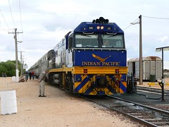 """Indian Pacific at Cook (sth475) Tags: railroad train country cook railway outback sa plain nullarbor indianpacific """"road trip"""" nrclass"""