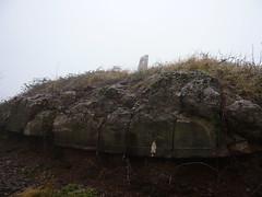 Bunkerreste am Galgenberg (spuren-der-kriege.de) Tags: winter grande skulptur ruine bunker ww2 region beton saar galgenberg armierung wiltingen grosregion