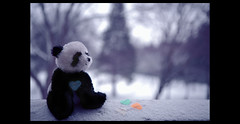 I will wait for you on the other side. (Kit H) Tags: bokeh widescreen canon5d loveproject canon2470mmf28l canonef2470mmf28 247bokehlife