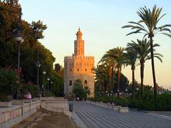 Sevilla (Graça Vargas) Tags: españa sevilla spain torredeloro graçavargas goldtower ©2008graçavargasallrightsreserved 2100080109