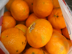 mandarins hania chania