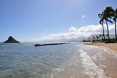 Kualoa Beach Park (didimouman) Tags: oahu kualoabeach