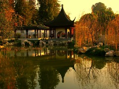 Chinese Garden at Huntington Library