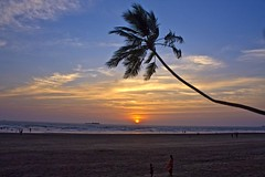 Sunset at Murud (Tilak Haria) Tags: blue sunset sea sky orange india tree beach clouds maharashtra murud abigfave pratibimbsangli winnerbc