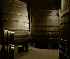 Bodega de Porto (_madmarx_) Tags: light luz portugal madera caves porto bodega gaia madeira vinho adega vino winecellar calem canoneos450d madmarx