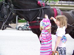 C6 and Q5 petting Bebe the horse