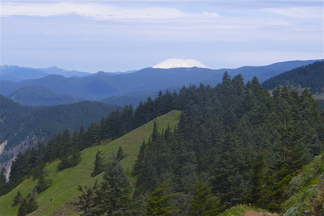 Mt. St. Helens from Dog Mountain
