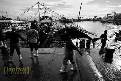 Gensan Fishport Morning Scene