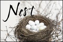 Nest - Page 045_phixr