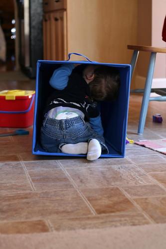 Walker in the Laundry Basket