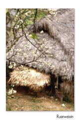 Tantrao224 (KhoanTuong - KhoaTran) Tags: landscape phongcảnh
