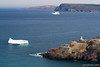 Fort Amherst and Icebergs