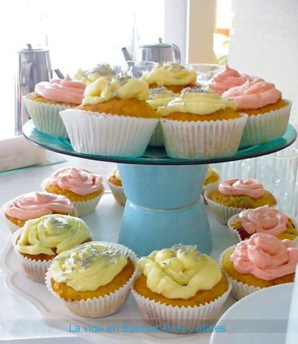 cupcakes juntos