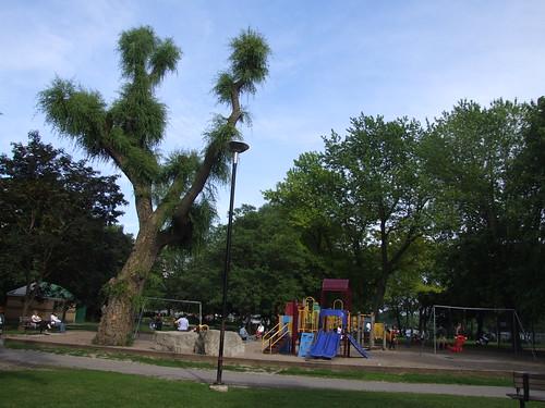 Oriole Park Playground