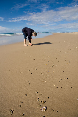 Shell hunting on Grandad's Beach