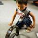 Tambourine Boy