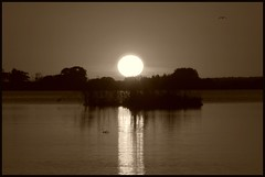 In my dreams (Kirsten M Lentoft) Tags: sunset lake reflection water silhouette denmark bravo monotone gbr firstquality fineartphotos arresø momse2600 visiongroup multimegashot goodnightsweetfriend mmmmmmmmuaahhhhhhhhhhhh kisssssssses haveverybadinternetthisafternoon kirstenmlentoft