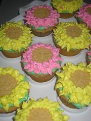 Zinnia cupcakes