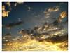 Golden Sky (Jessica Aquino) Tags: sol azul solar paisagem céu dourado pôrdosol contraste nuvem árvore raio mywinners mywinner citritbestofyours naturephotoshp prettynaturephotos theunforgettablepictures theunforgettablepicture goldsealofquality theperfectphotographer goldstaraward skiescloudsandsun screamofthephotographer