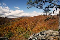autumn_in_the_mountains (PattyHankins) Tags: autumn mountains fallcolor va blueridgeparkway brp