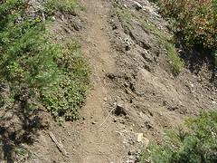 Trail erosion Shriner Peak trail.