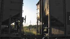 Coal hoppers in transit at Hawthorne Junction. Chicago / Cicero Illinois. September 2008.