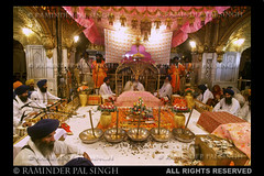 The Sanctum Sanctorum (Raminder Pal Singh) Tags: india canon gold shrine display priceless religion diamond jewellery precious pearl priest sikh punjab canopy rare amritsar goldentemple jewel sanctumsanctorum costly canon1d harimandirsahib goldwork darbarsahib raminder jlau rareview sachkhand harimandarsahib maharajaranjitsingh darbaarsahib religiousdisplay raminderpalsingh rarescene toshakhana jlaudisplayatgoldentemple jlauatdarbarsahib jlauatdarbaarsahib exceptionalview