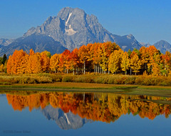 Oxbow Bend - Grand Teton NP (Dave Stiles) Tags: searchthebest fallcolors mountmoran aspen tetons gtnp oxbowbend absolutelystunningscapes vosplusbellesphotos