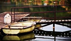 Magnyosan / Alone (Balzs B.) Tags: lake water pier boat pond hungary ship budapest bank part shore mole mere t ladik canonef24105mmf4lisusm vz haj stg napls 40d vzpart ml tpart naplst