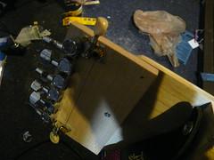 Headtsock, detail (bulbul tarang) (nulldevice) Tags: bulbul tarang bulbultarang