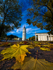 Autumn in Vilnius (Kritta) Tags: autumn orange fall leaves yellow geotagged october cathedral centre bluesky center belltower fallingleaves lithuania vilnius lightroom cathedralsquare mainsquare bellfry geo:lon=2528768420 geo:lat=5468501787
