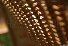 Let the Sun shine through (greenie11*) Tags: sun sunlight home girl garden soleil lyrics chair shine emotion song hana sit feeling tuin thuis moment amateur stoel sonne zon connection zahrada reference lied zidle melodie sitzen doma zitten svetlo slunce zonneschijn pisen sedet greenie11