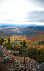 3,192 feet (grilljam) Tags: autumn trees sky landscape carpet rocks solitude weld horizon maine summit mountainscape mtbluestatepark mtblue andyouknowwhat icysolitudeatthat nahitwasnttoobad youknowasfarassummitsgo justwindy powerbarsnevertastedsogood sorryfortheblownoutsky