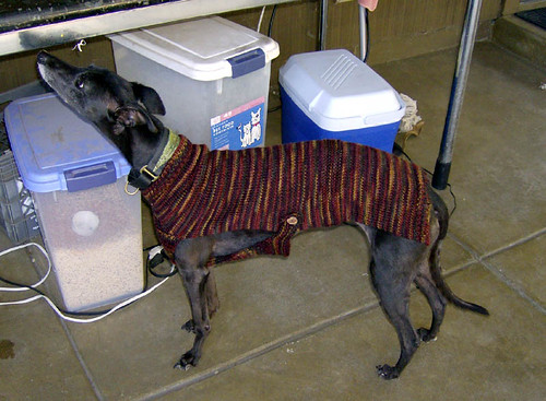 Streaka's Old Lady Whippet Sweater