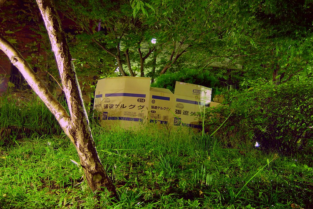 Corrugated paper house in Akihabara park