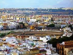 Sevilla (Graça Vargas) Tags: españa canon sevilla spain plazadetoros graçavargas ©2008graçavargasallrightsreserved larealmaestranza 4602041208