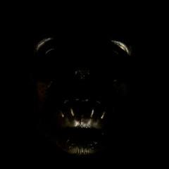 Mission 24 - Fright (zamburak) Tags: skull mask fright m24 deatheater mission24
