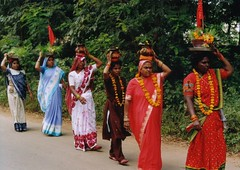 Jagdalpur: una processione di donne (kristin blancke) Tags: etnie chhattisgarh mariadalcornodibufalo