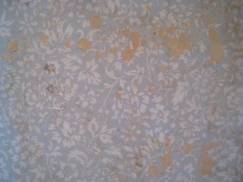 Wallpaper found in Den