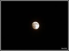 Signora Luna (Luca Morlok) Tags: light sky moon night canon dark eos lights satellite luna cielo moonlight luci 450 notte luce oscurit capossela vinicio chiarodiluna viniciocapossela lunare nottata 450d signoraluna canonefs55250is