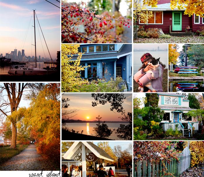 ward island collage