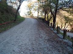 villaDraghi (Montegrotto Terme, Veneto, Italy) Photo