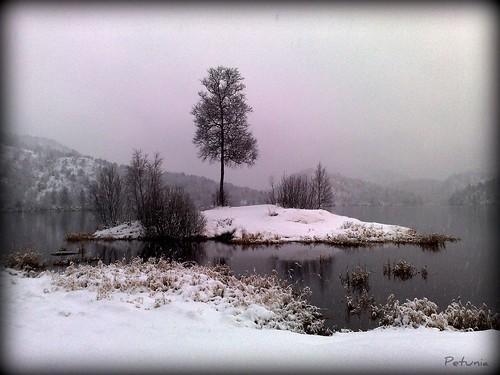 Vinterøy