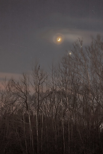 Forest 44 Conservation Area, near Valley Park, Missouri, USA - conjuction of moon and planets