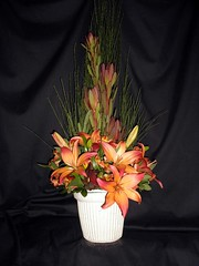 SA012  Sympathy Arrangement: Narrow symmetrical fall Lilies