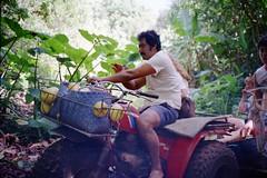 880626 Breadfruit Hunt (rona.h) Tags: june 1988 pitcairn cloudnine ronah