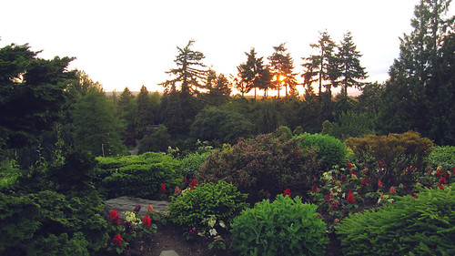 sunset over quarry garden